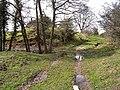 St Oswald's Way at Elyhaugh - geograph.org.uk - 1802198.jpg