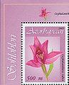 Stamp of Azerbaijan 695.jpg