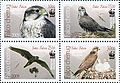 Stamps of Kyrgyzstan, 2009-573-576.jpg