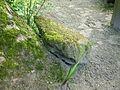 Steen in tuin heemhuis Deurne.JPG