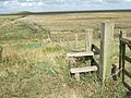 Stile on the sea bank of The Wash - geograph.org.uk - 1492046.jpg