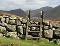 Stile over the Mourne Wall near Slievenaglogh - geograph.org.uk - 1205687.jpg