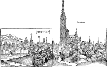 View of the city and the Strasbourg Cathedral from 1493
