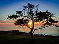 Sunrise - North Shore Port Lincoln - South Australia.jpg