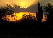 A sunset in the Arizona desert near Scottsdale. The climate and imagery are two factors behind Arizona's tourism industry.