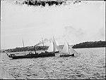 Sydney Harbour near Potts Point (2485134636).jpg