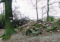 Szaniec powstanczy, Zduny (2007).jpg