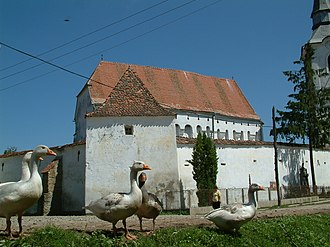 Dârjiu - 13th Century UNESCO World Heritage fortified Unitarian Church, and some geese