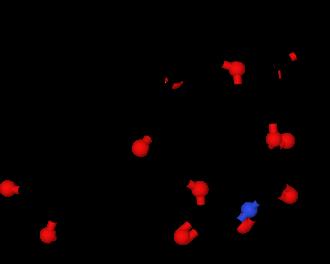 Tacrolimus - Image: Tacrolimus 1YAT ball and stick model