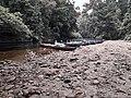Taman Negara National Park 20190711 114430.jpg