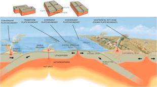 La tettonica a placche e la subduzione sono considerati fenomeni essenziali per lo sviluppo della biodiversità su un pianeta