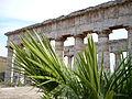 Tempio di Segesta 18.JPG