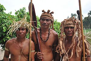 Temuan people - Image: Temuan people