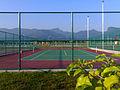 Tenismerbok.jpg