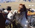Terelj National Park, Mongolia (15474834317).jpg