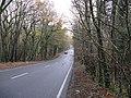 The A264 heading towards Five Oaks - geograph.org.uk - 1592990.jpg