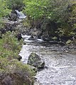 The Scallastle River, near Dubh Choire - geograph.org.uk - 456266.jpg
