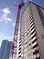 The crane and Stephenson Tower - Queens Drive (5336298616).jpg