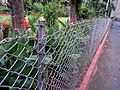 The fence, mumbai university,TN510.jpg
