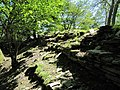 The ruined walls - geograph.org.uk - 1328400.jpg