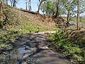Thunamkadavu Dam - panoramio.jpg