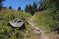 Tignes - trail 6.jpg