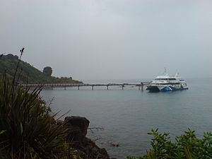 Tiritiri Matangi Pier Looking Southwards.jpg