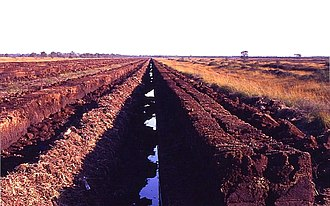 Peat extraction in East Frisia, Germany. Peat extraction degrades peatland and is possible as many peatlands are currently not protected. Torfabbau-.jpg