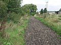 Track to Allexton - geograph.org.uk - 236464.jpg