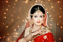 Traditional Bridal Portrait.jpg