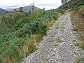 Trail in Glen Finglas Woodland Trust - geograph.org.uk - 544022.jpg