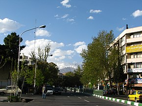 Trees,Tochal Mountin in Merzaye Shirazi Ave. At 2011 Spring - panoramio (4).jpg
