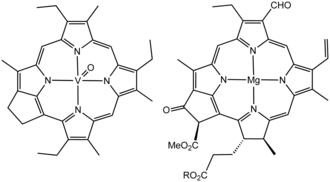 Kerogen - Structure of a vanadium porphyrin compound (left) extracted from petroleum by Alfred E. Treibs, father of organic geochemistry. The close structural similarity of this molecule and chlorophyll a (right) helped establish that petroleum was derived from plants.