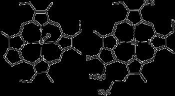 Confronto tra la molecola di metalloporfirina estratta dal petrolio da Alfred E. Treibs (a sinistra) e la molecola di clorofilla (a destra).