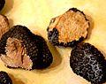 Truffes d'été en Drôme provençale.jpg