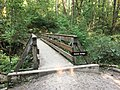 Tryon Creek State Natural Area 2017 06.jpg