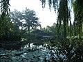 Tsinghua Garden4.jpg