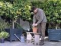 Tuinman aan het werk in de oranjerie - Goor - 20405216 - RCE (1).jpg