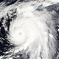 Typhoon Nesat 06 jun 2005 0140Z.jpg