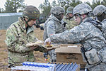US, UK artillerymen participate in Operation Pegasus Cypher 150112-A-ZK259-050.jpg