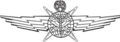 USAF Cyberspace Operator Badge-Master.png