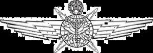 John E. Hyten - Image: USAF Cyberspace Operator Badge Master