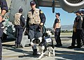 US Air Force 100114-F-7885H-106 Airmen deliver urban search, rescue team to Haiti.jpg