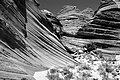 UTAH - South Coyote Buttes (1) (11118058396).jpg