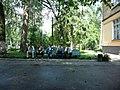 Ukraine. August 2012. Forest Vodice. - panoramio (3).jpg
