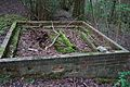 Unidentified structure in woodland1.jpg