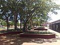 Universidade Federal de Lavras (Cantina) - panoramio - pliniotorres.jpg