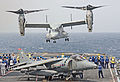 V-22 landing on HMS Ark Royal during Exercise Auriga 10.jpg