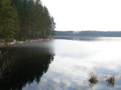 How to get to Valguta Mustjärv with public transit - About the place