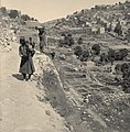 Valleys of Jehoshaphat and Hinnom. Siloam, general view. Approximately 1900 to 1920. matpc.00935.Left.jpg